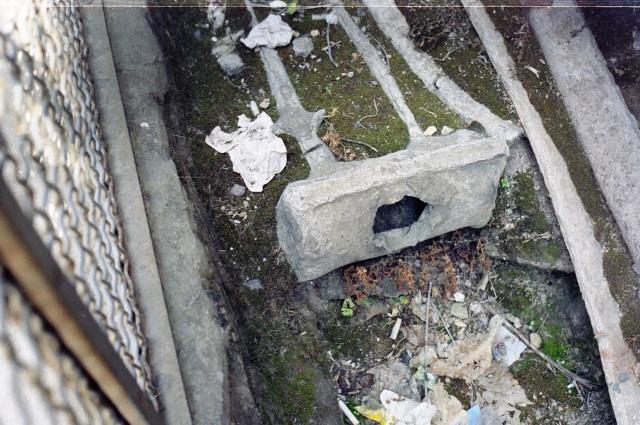 Pompeii pipe4001